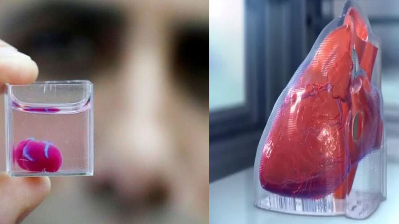 3D bioprinting heart