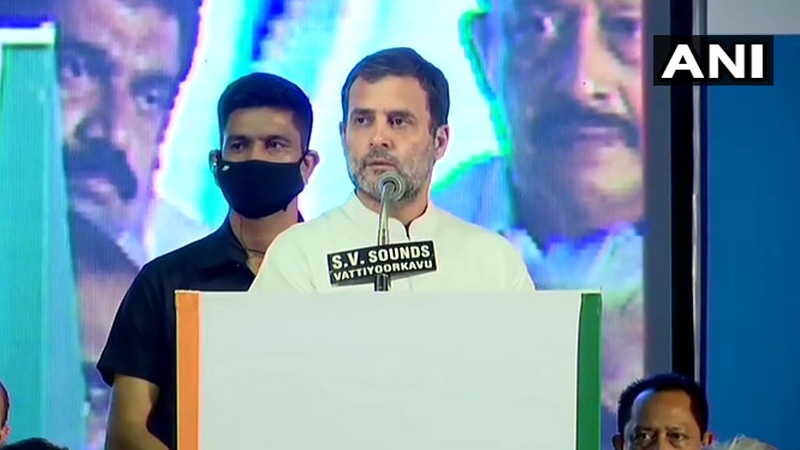 rahul-gandhi-says-15-years-i-was-an-mp-in-north-i-had-got-used-to-a-different-type-of-politics