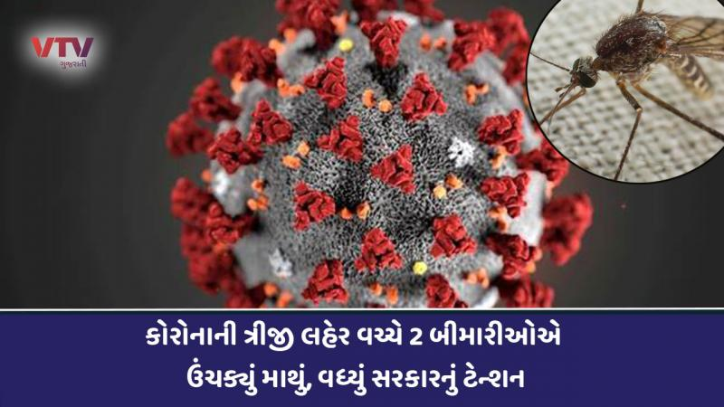 health expert says dengue malaria and chikungunya cases may be new challange in india after coronavirus