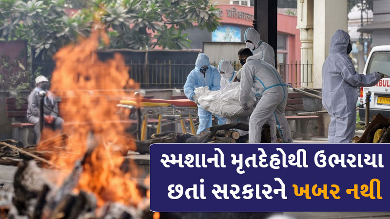 Difference in figures of death by corona virus in gujarat