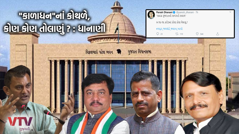 Gujarat ByElections 2020 Paresh Dhanani attacked by tweeting