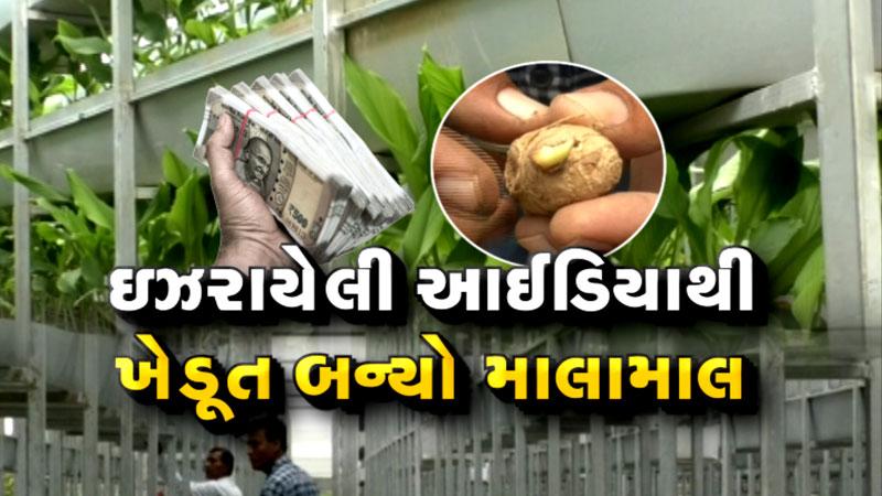 farmers of himmatnagar uses Israeli technology in turmeric farming and earns crores
