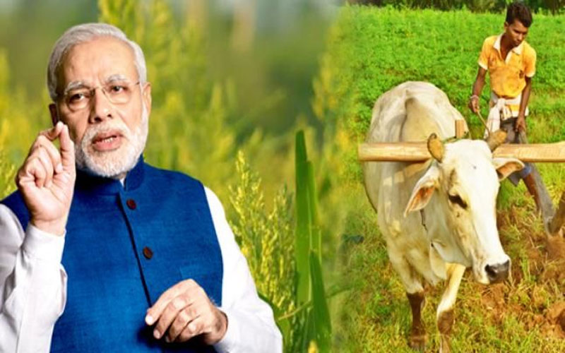 pm kisan samman nidhi scheme amount can 8000 rupees annually budget 2019 modi government agriculture sbi