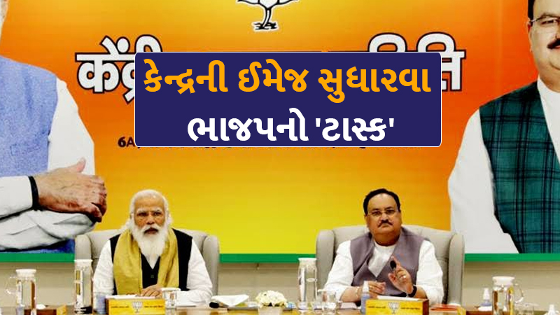 BJP tasks Morchas to take Centre schemes to masses, train 1 lakh health volunteers