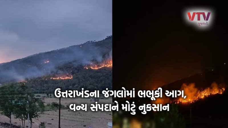 terrible fire in the forests of uttarakhand