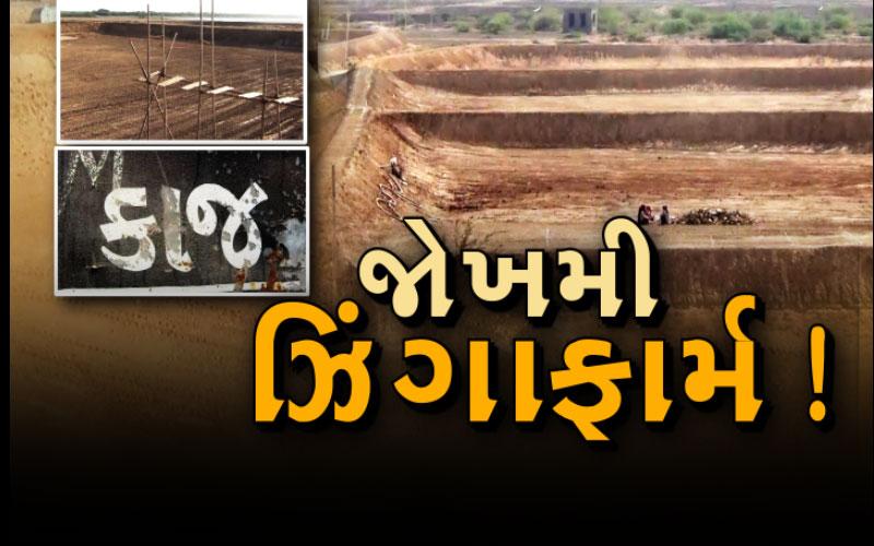 farmer Gujarat kodinar trouble