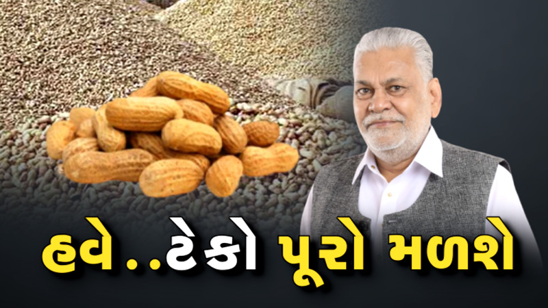 VTV Exclusive for farmer groundnut rate purushottam rupala in center government