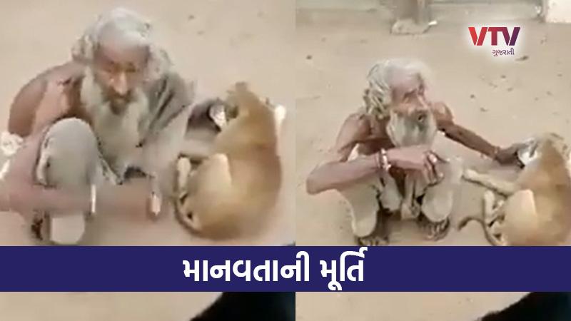 beggar feeds street dogs