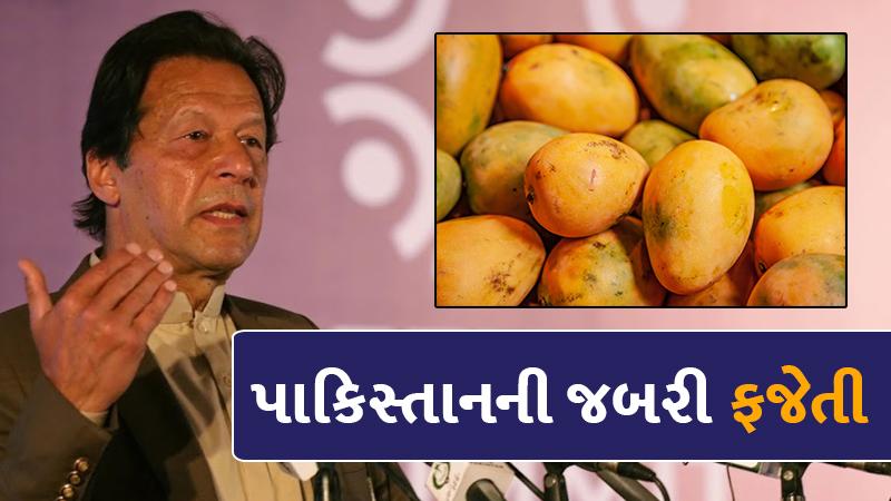 Pakistan Imran Khan mango diplomacy finds no takers in US China