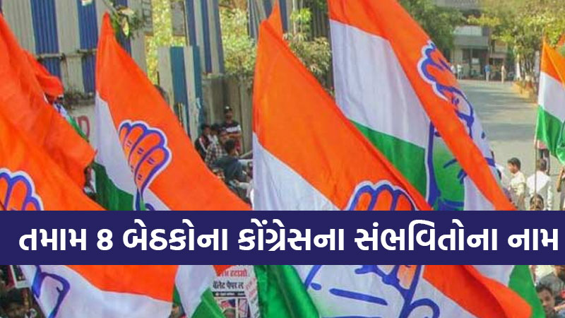Gujarat Assembly by-elections 2020 Congress Probable names 8 seats