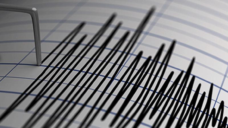 Earthquake of magnitude 4.2 hits Bhachau kutch Gujarat