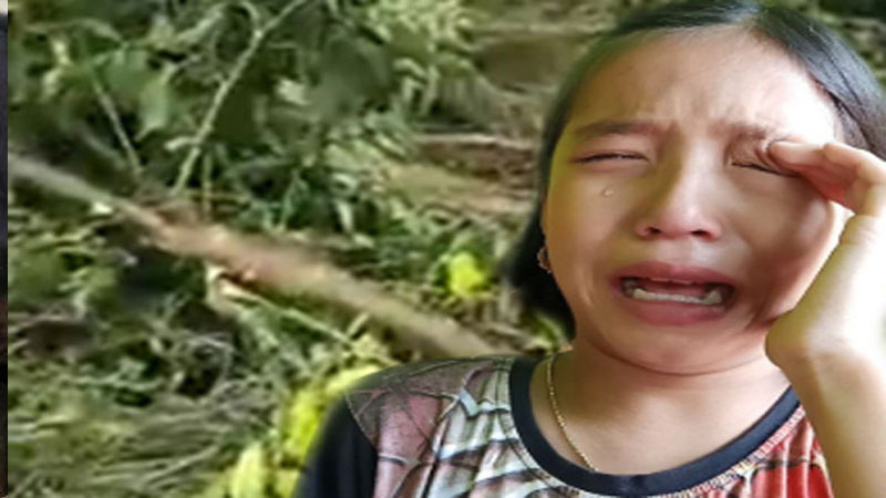 this girl is now the green ambassador of Manipur after crying for two trees