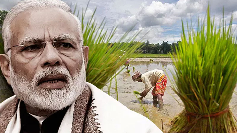 now modi government will direct contact to farmers on mobile for agriculture schemes-PM-Kisan Samman Nidhi-yojana