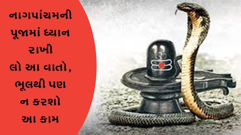 On Nagpacham Worship with this Mantra and Know about Does and Donts