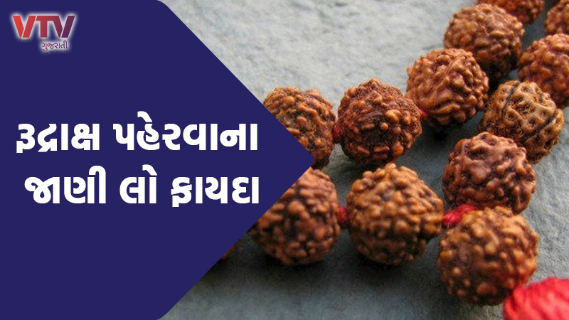 Rudraksha is the only fruit which has many benefits to know, in terms of religion and science.