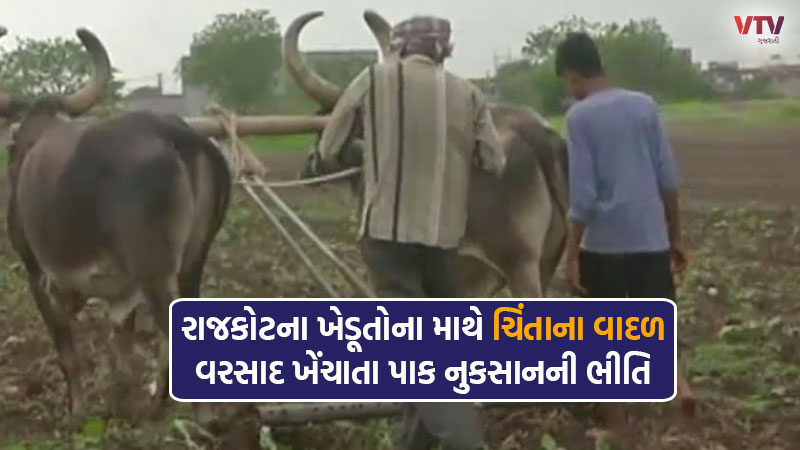 Concern among farmers due to lack of rainfall in Gujarat