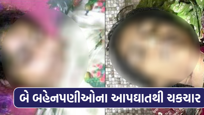 two Friends committed suicide in Rajkot