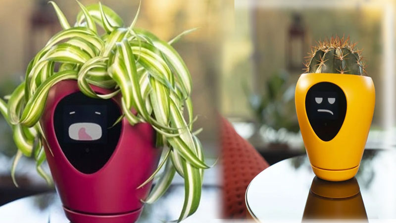 Smart flower pot that can indicate plant 15 emotions