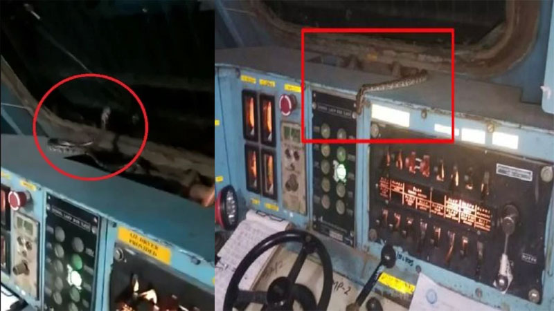 2.5 meter long snake found in a train engine loco pilot shocked to see viral video