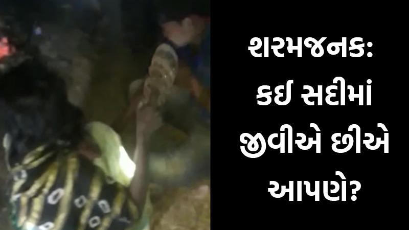kutch love birds Video viral