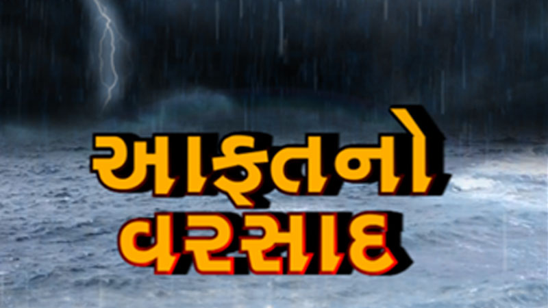heavy rain fall in south gujarat