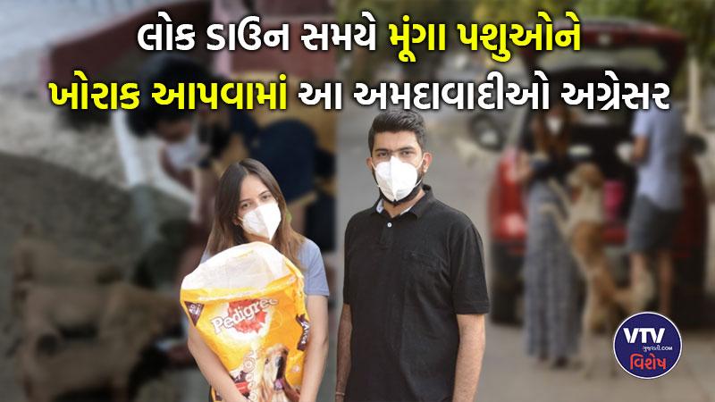 two ahmedabadis feed stray animals around the city amid coronavirus lockdown