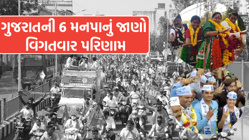 Find out the detailed results of 6 MNC of Gujarat, who got how many seats