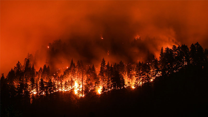 fire in california arizona forest america