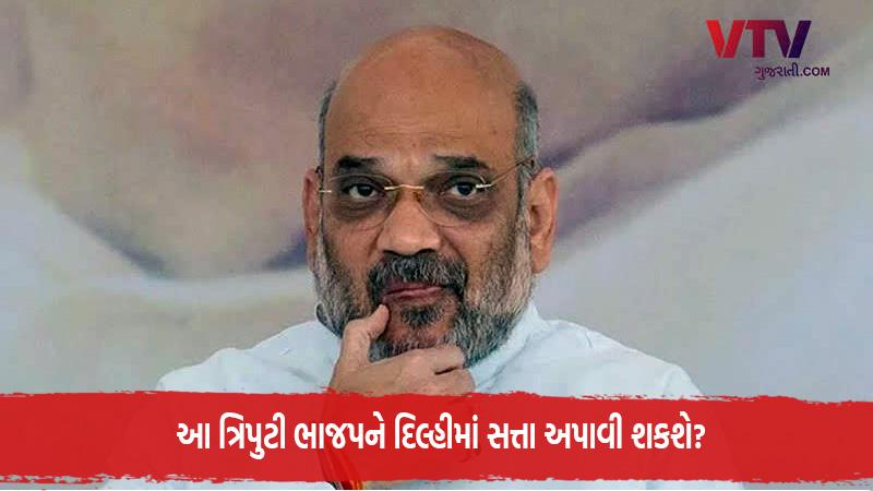 delhi assembly election amit shah jp nadda prakash javdekar