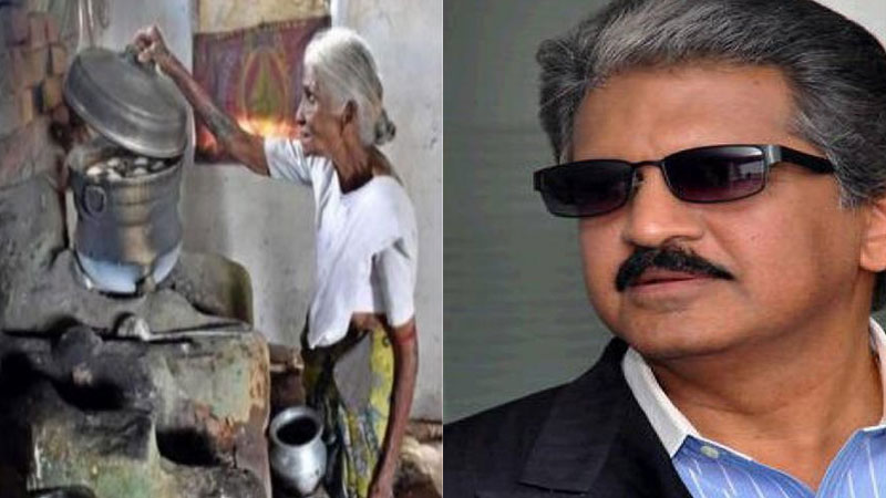 Businessman Anand Mahindara Wants To Invest In Idli Wali Dadis Business