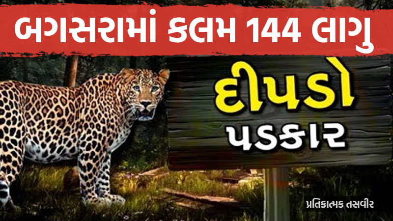 Leopard terror Bagasara Section 144 applies Forest Department Mega Action Plan Amreli