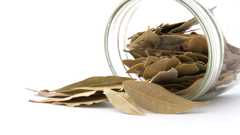 burning bay leaf your house can give you lot health benefits