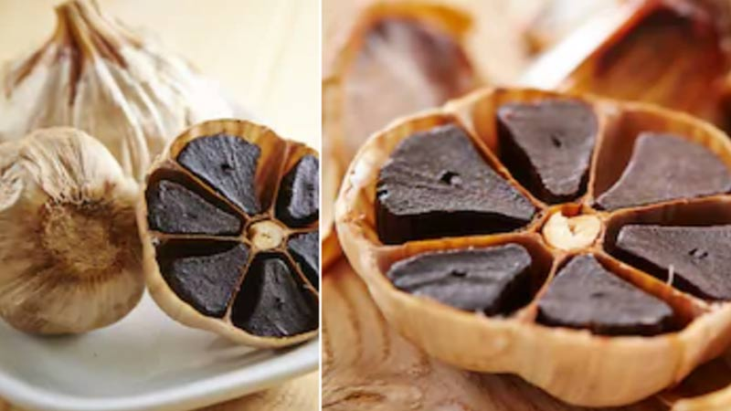 benefits of black garlic in cancer and heart disease