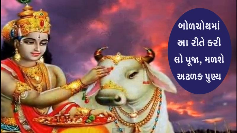 Bol chauth 2019: Know the pooja and vrat katha, Cow pooja in evening is must