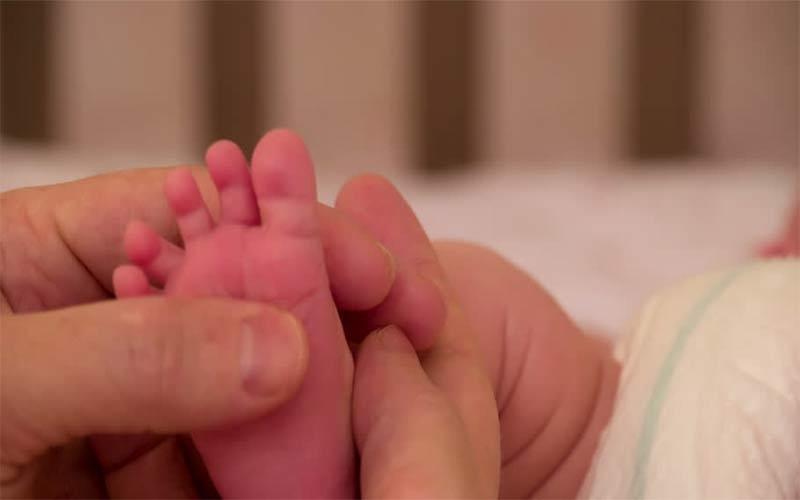અમદાવાદ: કચરાપેટીમાંથી નવજાત મૃત બાળક મળી આવ્યુ