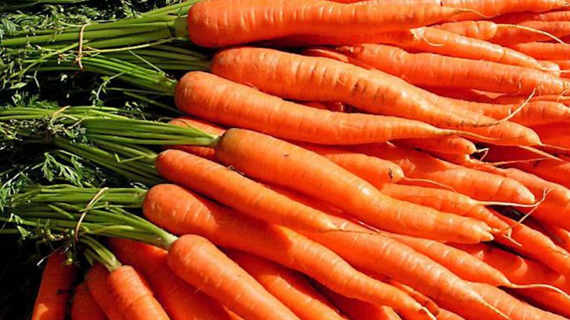 Benefits Of Eating Carrot in winter