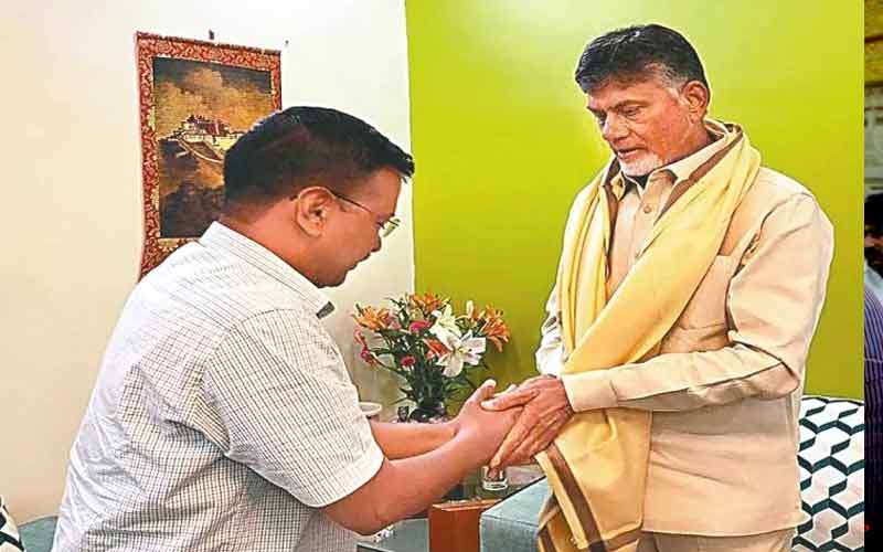 Andhra CM Chandrababu Naidu meets Opposition leader
