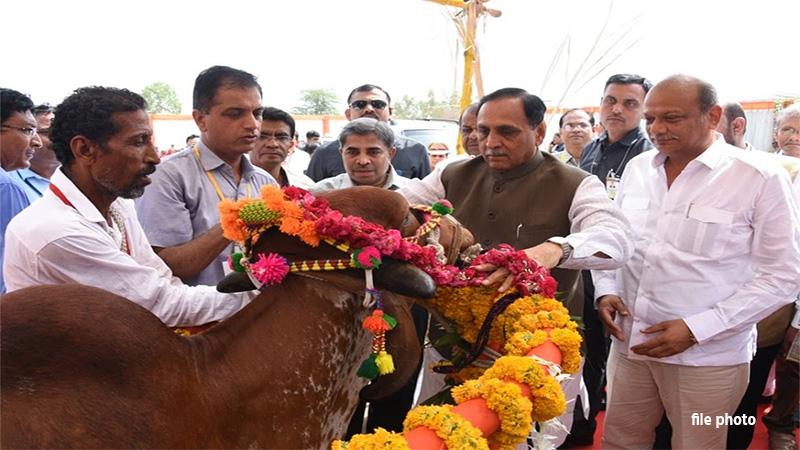 Gujarat government subsidy on animal welfare