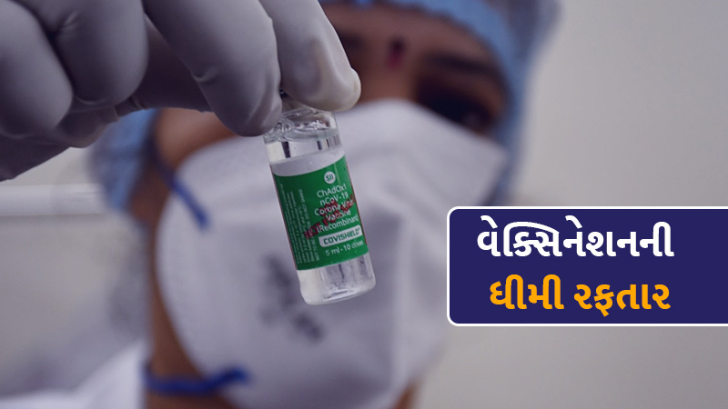 covid 19 vaccination at current rate india will take 10.8 years to vaccinate 70 population
