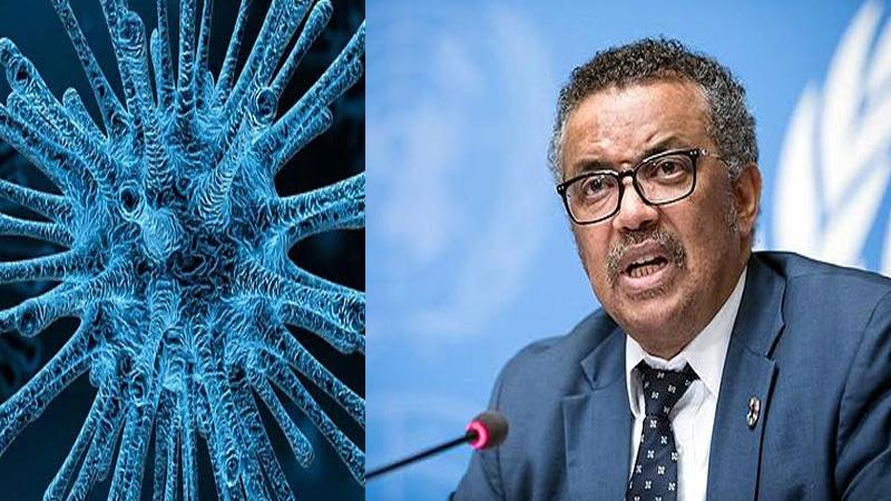 coronavirus cases will increase warns WHO