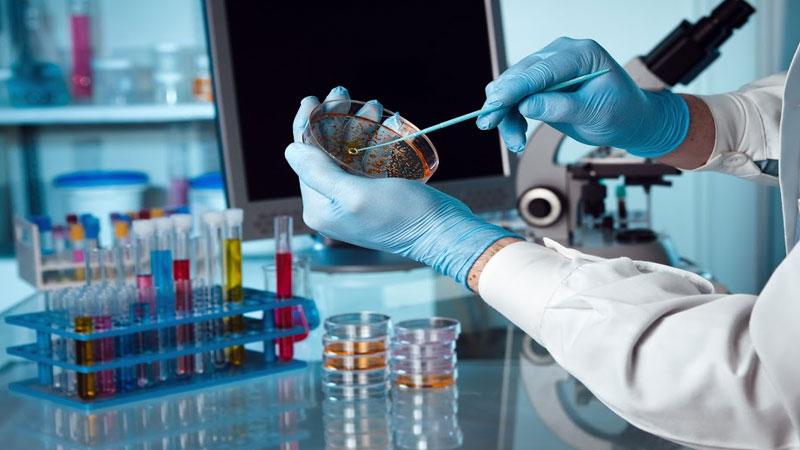 hyderabad lab coronavirus lab controlled growth scientists