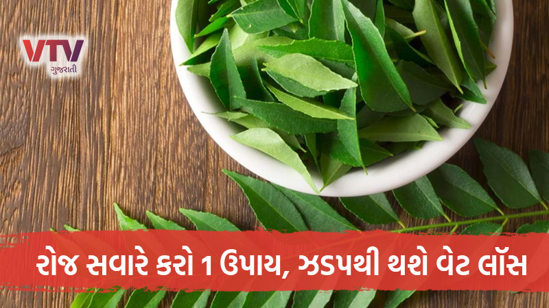 curry leaves are a natural way to lose weight along with belly fat be reduced