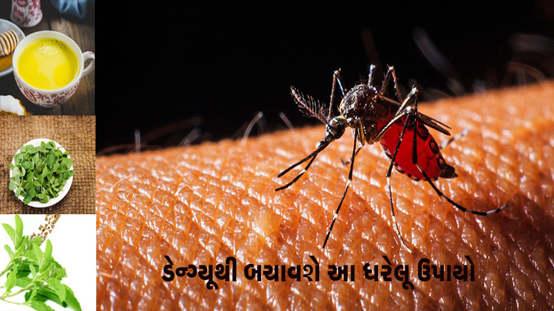 Be aware and use this home remedies for dengue Fever