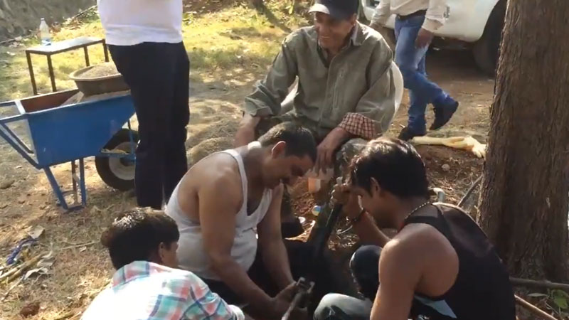 Dharmendra's video with farmers on his farm went viral