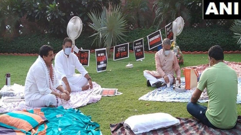 suspended rajyasabha mps spend night outside parliament in protest as farmer unrest grows