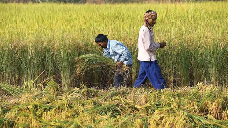 only 37 percent funds under pm kisan scheme disbursed in the first seven months