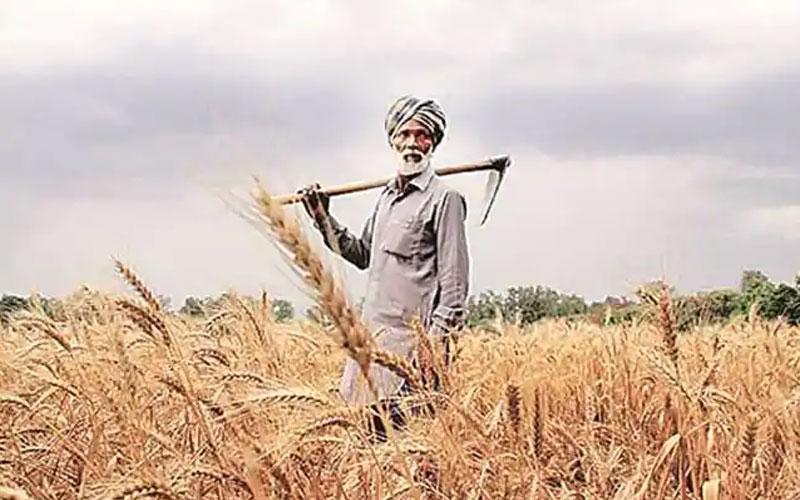 national centre govt asks states to speed up farmer enrollment under pm kisan yojna