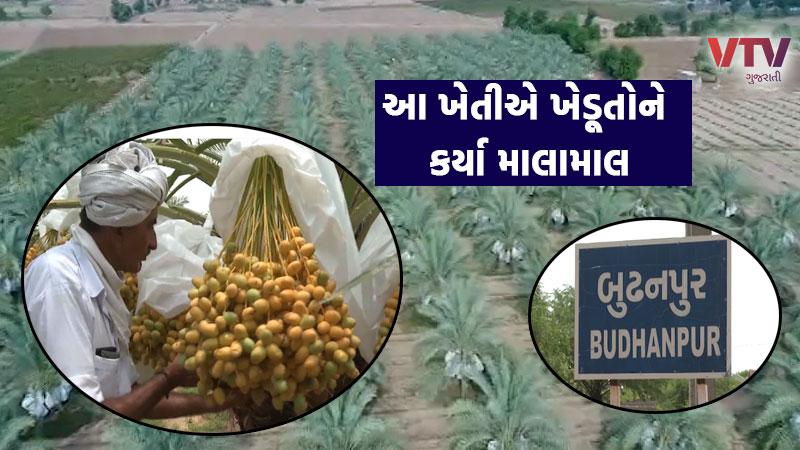 Kharek farming in Banaskantha success story gujarati farmer
