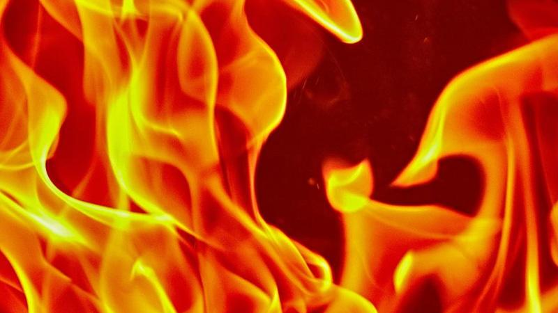 fire broke out Vadodara Padra Jain Farm Fresh Food company Anand chemical company