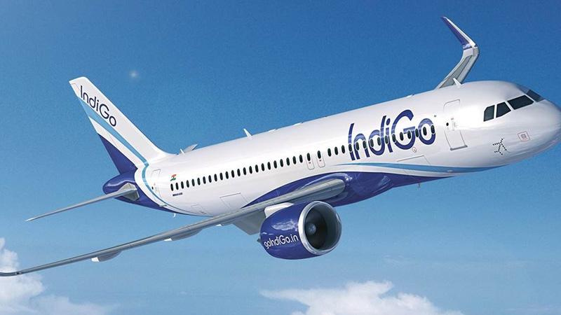 cyclone tauktae update indigo and air vistara issue travel advisory